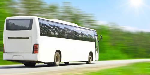 autobus ischia
